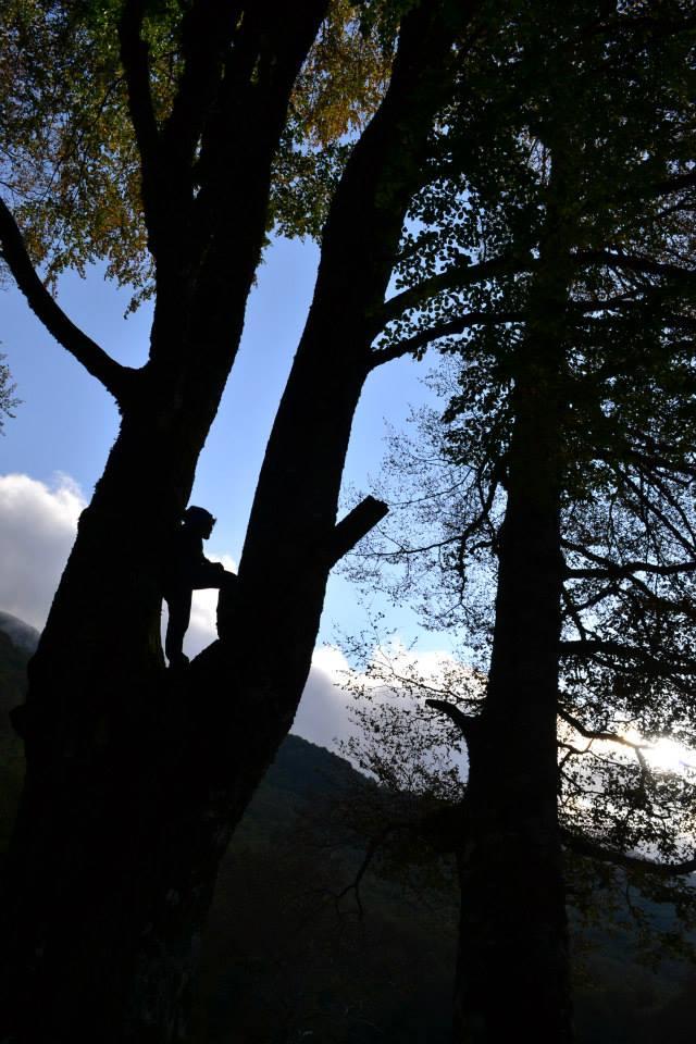 Parco d'Abruzzo - foto Ilaria Macedonio