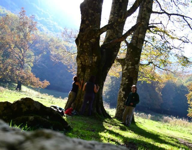 Parco d'Abruzzo - Val Fondillo